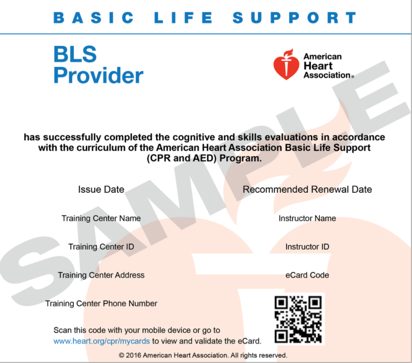 Attentive Safety BLS Provider Card